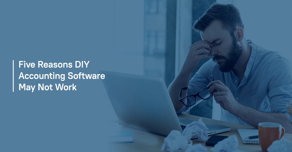 Five Reasons DIY Accounting Software Not Work