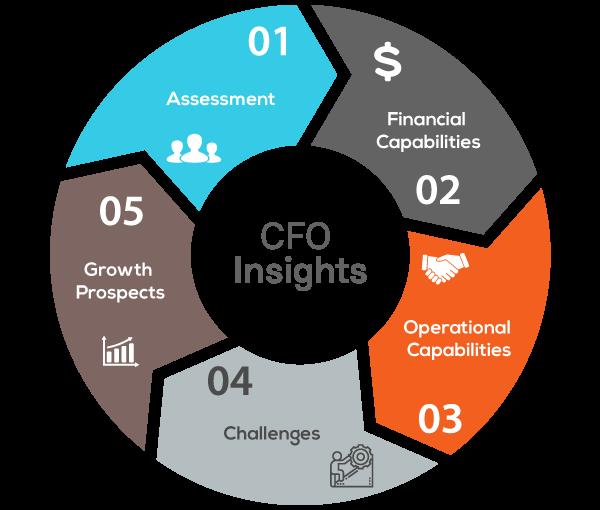 How Can a Virtual CFO Infograph