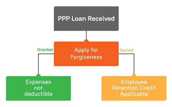 PPP Loan Forgiveness Infographics
